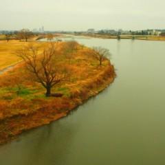 石田晃久 公式ブログ/きようの多摩川 画像3