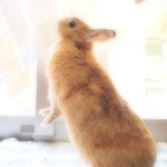 石田晃久 公式ブログ/おはよう。 画像3