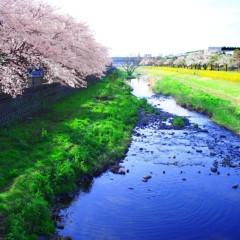 石田晃久 公式ブログ/春が来た3 画像3