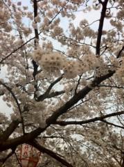 國嶋絢香 公式ブログ/ふぁんむーー! 画像2
