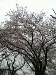布施直道 公式ブログ/高まる季節☆ 画像1