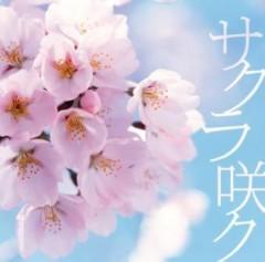 SKELT 8 BAMBINO 公式ブログ/『サクラ咲ク』 うたギフトキャンペーンスタート! 画像2