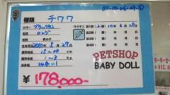 SKELT 8 BAMBINO 公式ブログ/運命!! 画像2