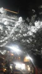 川連廣明 公式ブログ/春 画像1
