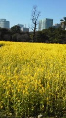 川連廣明 公式ブログ/先日、 画像1