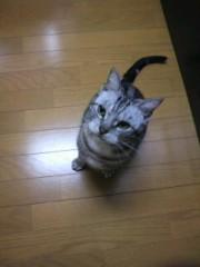 和田彩花(スマイレージ) プライベート画像 101〜120件 いくぞっ1