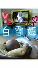 飯沼ももこ 公式ブログ/テレビ大好き 画像1