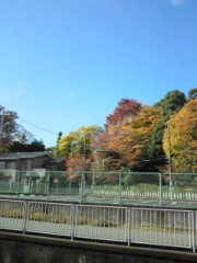 伊藤俊彦 公式ブログ/天気雨 画像1