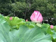 村松えり 公式ブログ/谷根千散歩 画像3