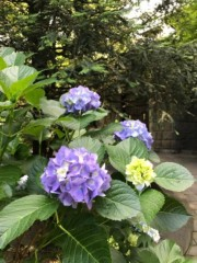村松えり 公式ブログ/旧細川邸本館 画像1