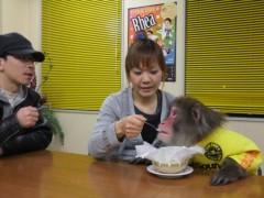 ゆりありく 公式ブログ/第7回「『銀のぶどう』のチーズケーキ 」 画像3