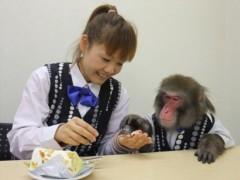 ゆりありく 公式ブログ/イチゴのシフォンケーキ 画像3
