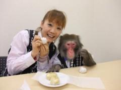 ゆりありく 公式ブログ/うさぎ饅頭& 味噌饅頭 画像1