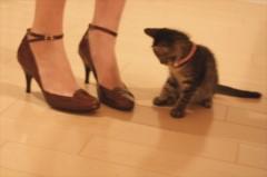 creai 公式ブログ/♡ fuzzy little baby... ♡ 画像2