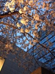creai 公式ブログ/le 25 Mars 2013  画像1