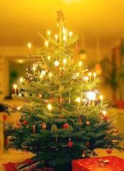 creai 公式ブログ/Joyeux Noël..☃ 画像2