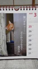 天野慶子 公式ブログ/猫川柳カレンダーGET!! 画像2