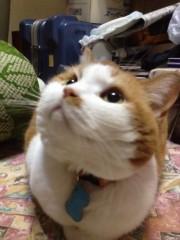 天野慶子 公式ブログ/感謝! 画像1