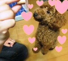 ならゆりあ 公式ブログ/Happy Birthday dear Cookie☆彡 ♪U・ω・)ノワフン♪ 画像3