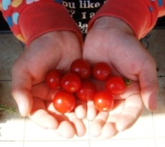 ならゆりあ 公式ブログ/収穫♪ 画像1