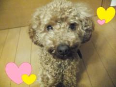 ならゆりあ 公式ブログ/風〜〜(*´д`*) 画像1