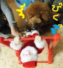 ならゆりあ 公式ブログ/Cookie君のクリスマス♪U・ω・)ノワフン 画像2