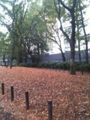 中山孟 公式ブログ/枯葉を見ると思い出す… 画像1