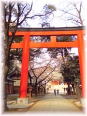 中山孟 公式ブログ/4月1日の目標〜今日も綺麗な桜〜 画像1