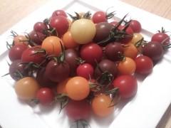 纐纈英里香 公式ブログ/カラフルなトマト・・・ 画像1