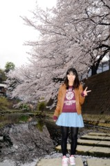 荒井英夫 公式ブログ/桜満開 画像1