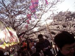 荒井英夫 公式ブログ/花見 画像3