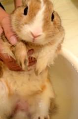 荒井英夫 公式ブログ/入浴中 画像2