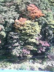 エスパー伊東 公式ブログ/紅葉 画像1
