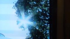エスパー伊東 公式ブログ/太陽観察 画像1