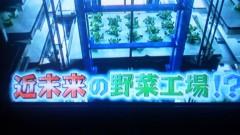 エスパー伊東 公式ブログ/野菜工場 画像1