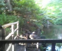 エスパー伊東 公式ブログ/椿山荘にて 画像1