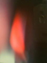 エスパー伊東 公式ブログ/証明のために 画像1