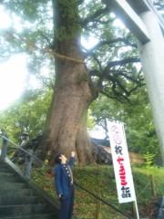 エスパー伊東 公式ブログ/樹のパワー 画像1