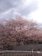 長尾祐哉 公式ブログ/春ぽよ♪ 画像1