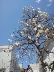 長尾祐哉 公式ブログ/Welcome春 画像1