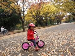 田村月子 公式ブログ/ピェンロー鍋 画像1