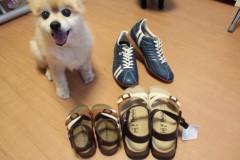 田村月子 公式ブログ/ビルケン 画像1