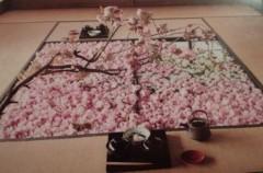 マナ 公式ブログ/桜の季節 画像1