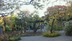 マナ 公式ブログ/向島百花園 画像2