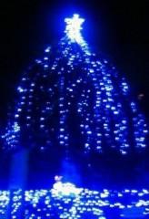 マナ 公式ブログ/クリスマスツリー 画像1
