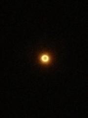 スタジオライフ 公式ブログ/金環日食浮かれモード 画像1