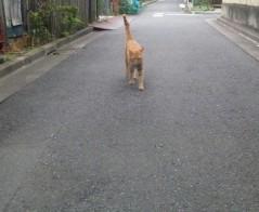 小林万桜 公式ブログ/まっちゃん 画像1