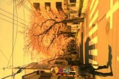 絵理子 公式ブログ/サクラの花とともに… 画像1