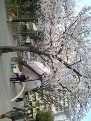 絵理子 公式ブログ/きれい 画像1
