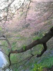 絵理子 公式ブログ/おっかいもの 画像1